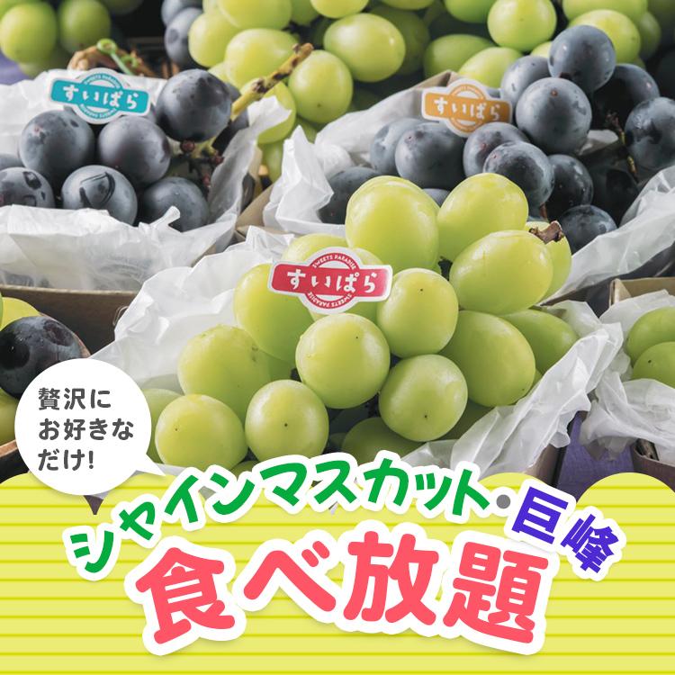 シャインマスカット・巨峰食べ放題(9/4(金)~)